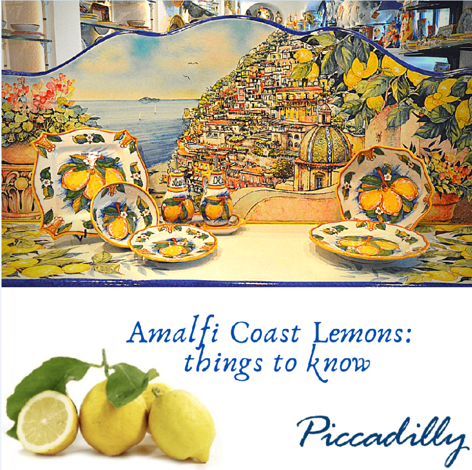 Amalfi Coast Lemons: All things to know